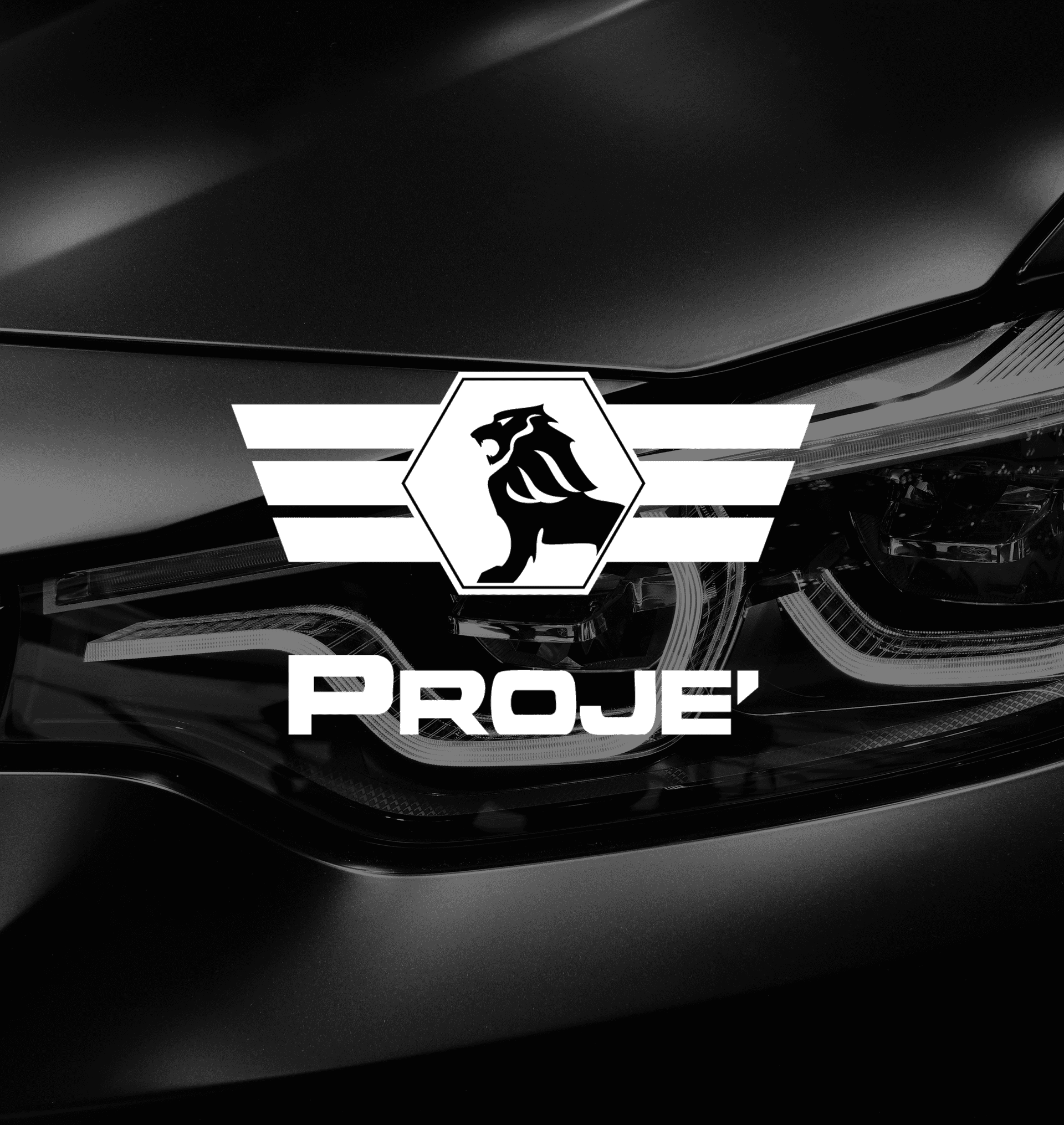 Proje Products